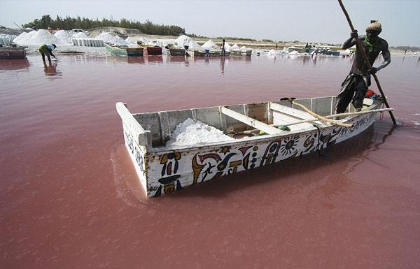 lago rosa senegal turismo